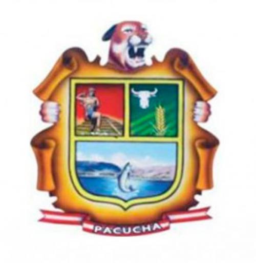 Pachucha